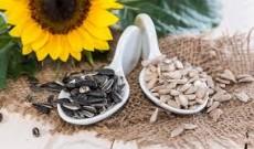 Semi di girasole: un concentrato di benessere